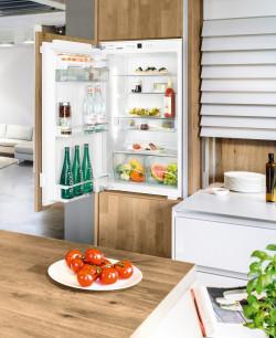 Холодильник без морозильника Liebherr IK 1960