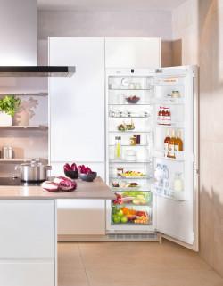 Холодильник без морозильника Liebherr IK 3520